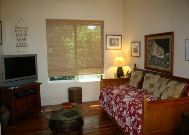 Bedroom 3 TV Room