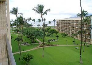 Maui Sunset #B1323502