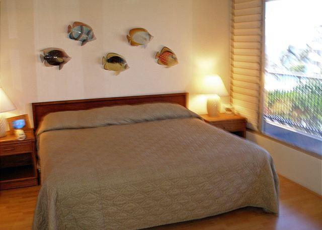 MK411 Back Bedroom