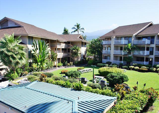 Complex Tropical Courtyard