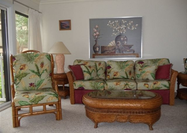 Living room with a new queen sofa sleeper