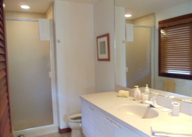 BATHROOM OFF THE TWIN BEDROOM