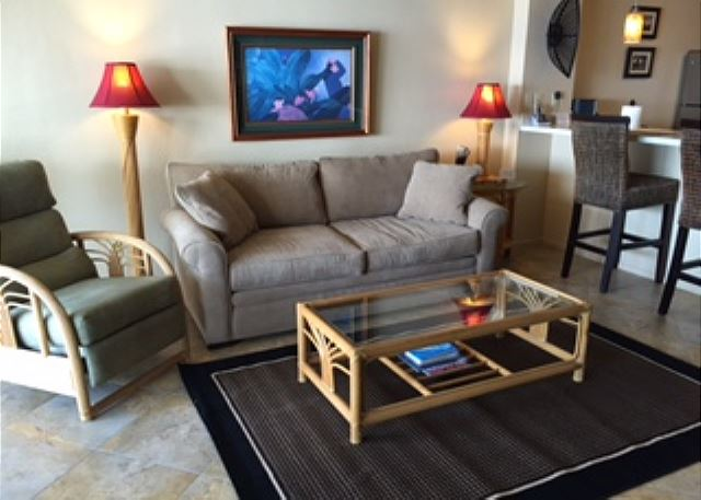 Living area with new couch