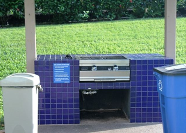 Outdoor Complex Grill Nearby Unit