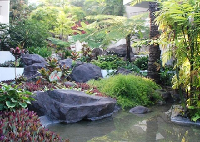 Tropical Foliage and Water Features