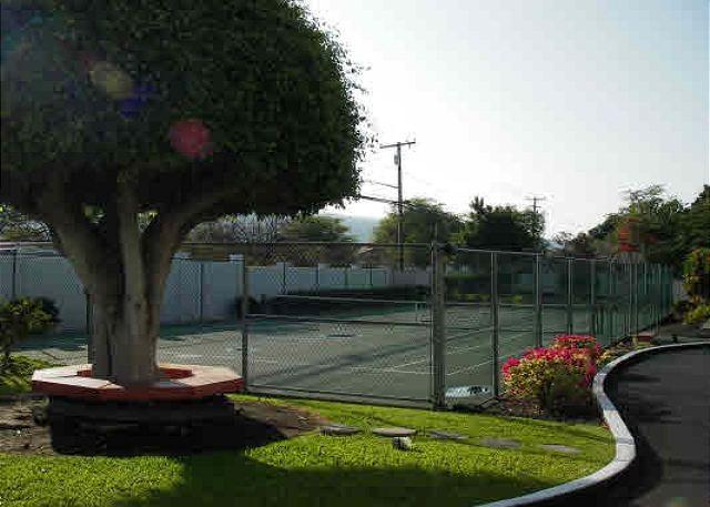 Tennis Courts at Royal Sea Cliff