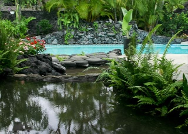 Keiki Ponds  Wading Pools great for little ones