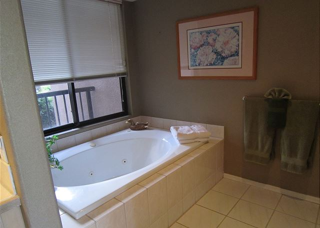 Master bathroom with large soaker tub