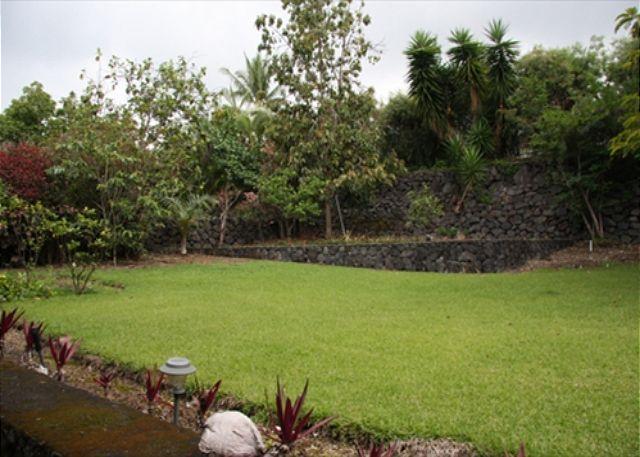 Ohana Backyard
