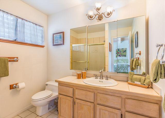 Master bathroom with tubshower