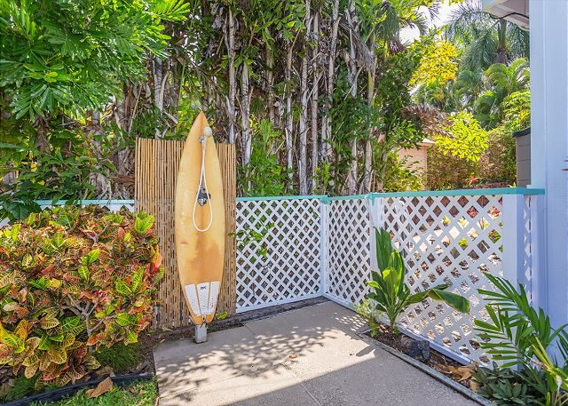 Outdoor surfboard shower