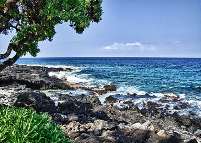 Beautiful Ocean Views From Royal Sea Cliff