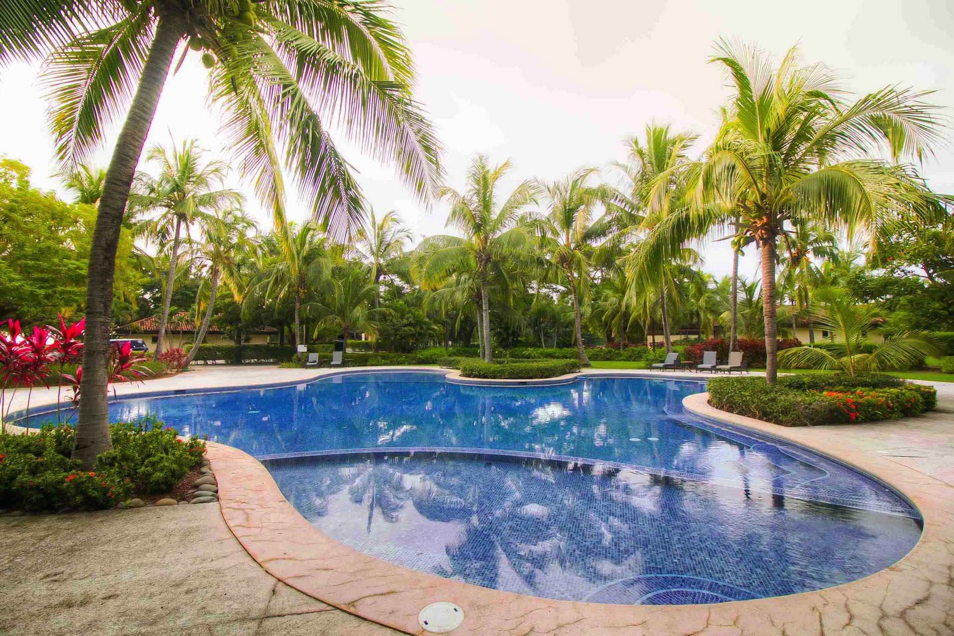 At Villa Mansita, this custom pool is yours to enjoy