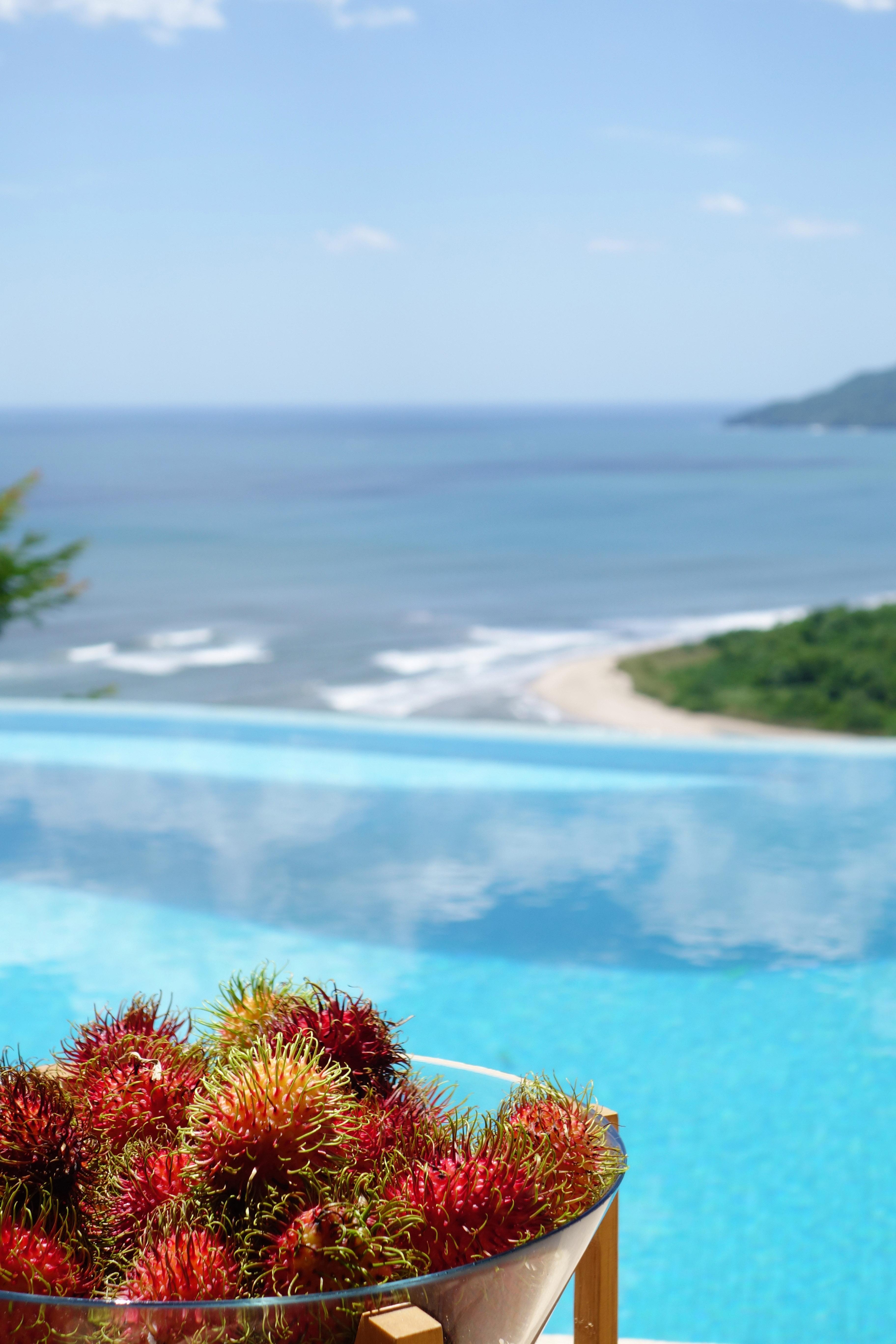Enjoy tropical Costa Rica