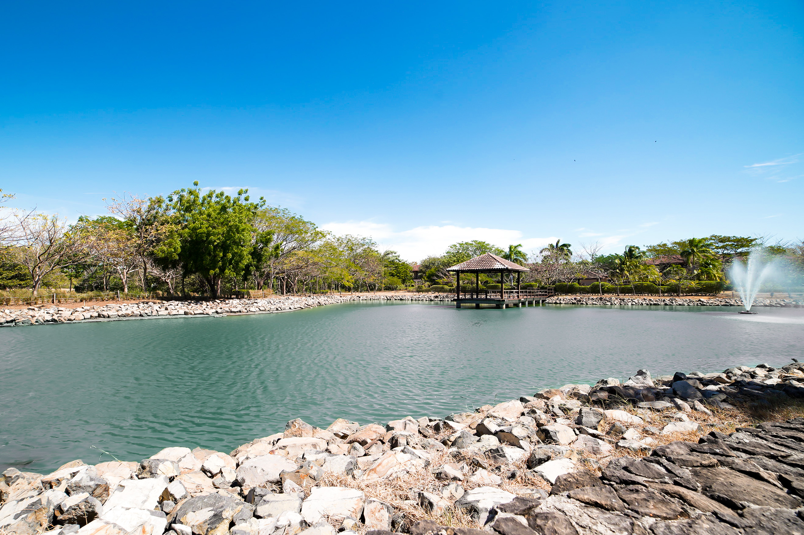 Beautiful view of the lake