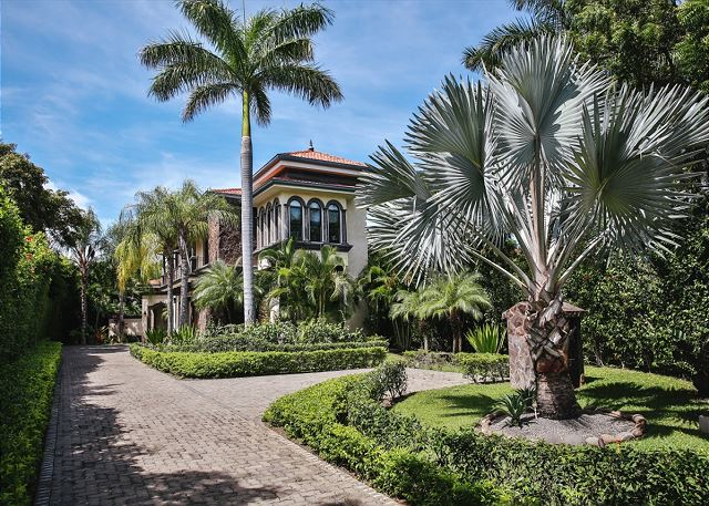 Casa Serena's royal palms