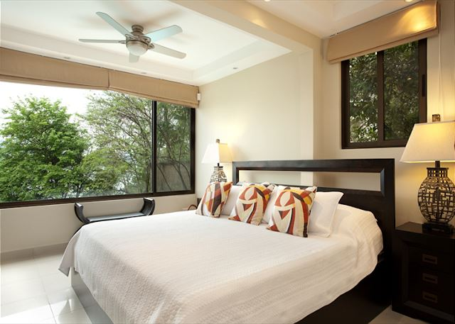 Guest room with tree-top view
