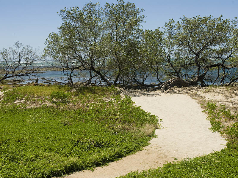 Private pathway to the beach!
