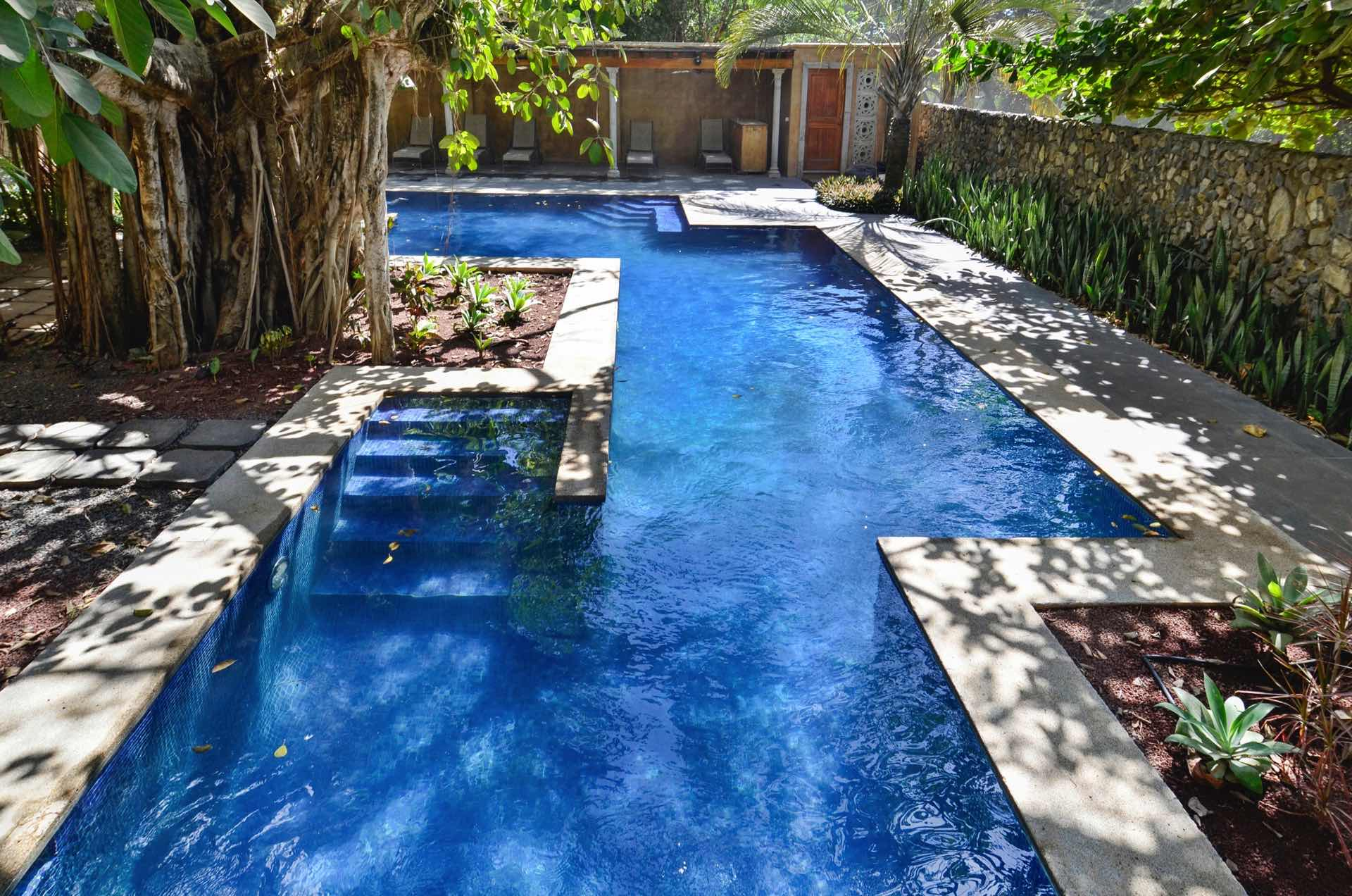 Pool constructed to save a native Banyan tree