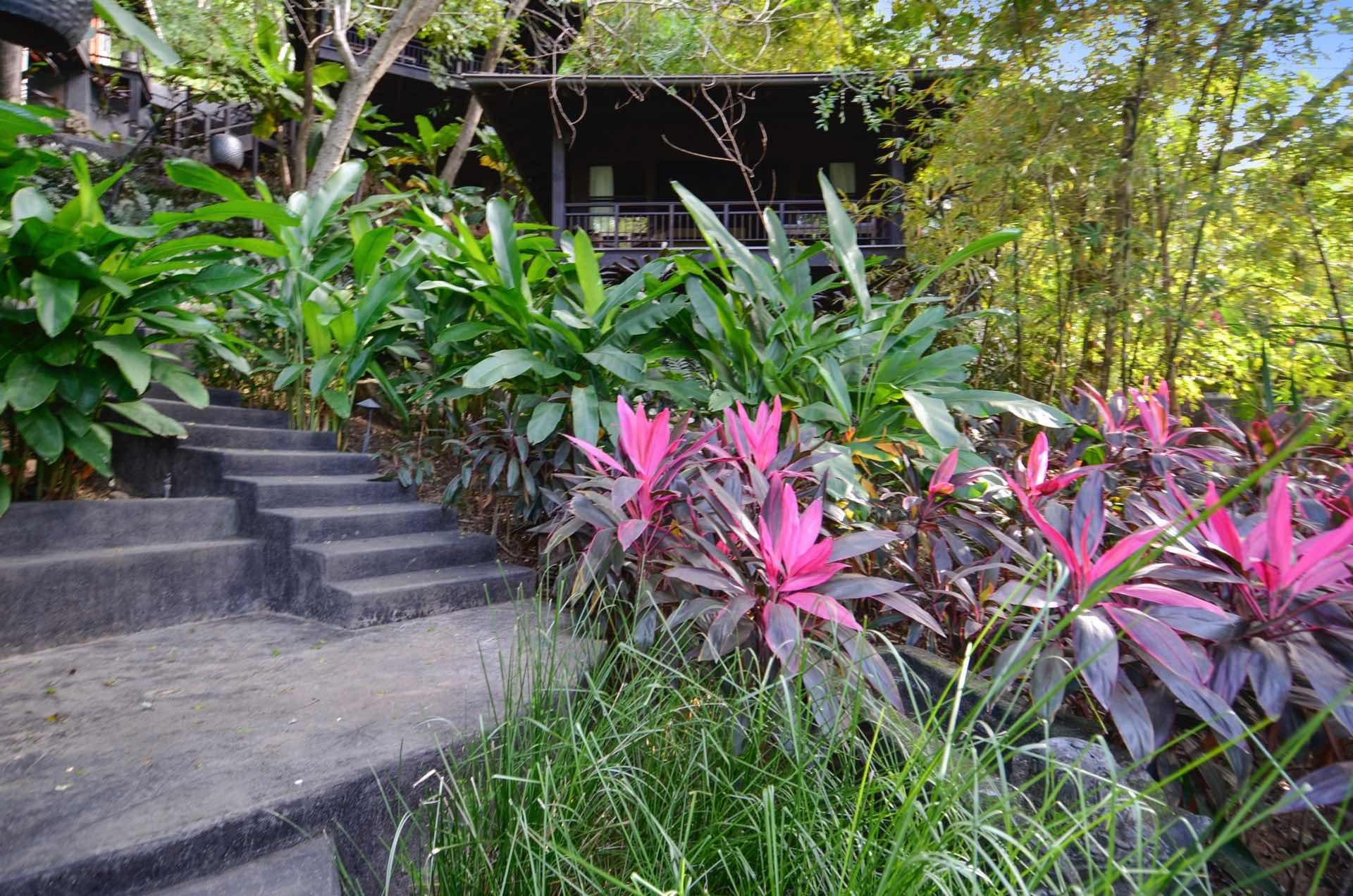 Colorful foliage surrounds El Chante