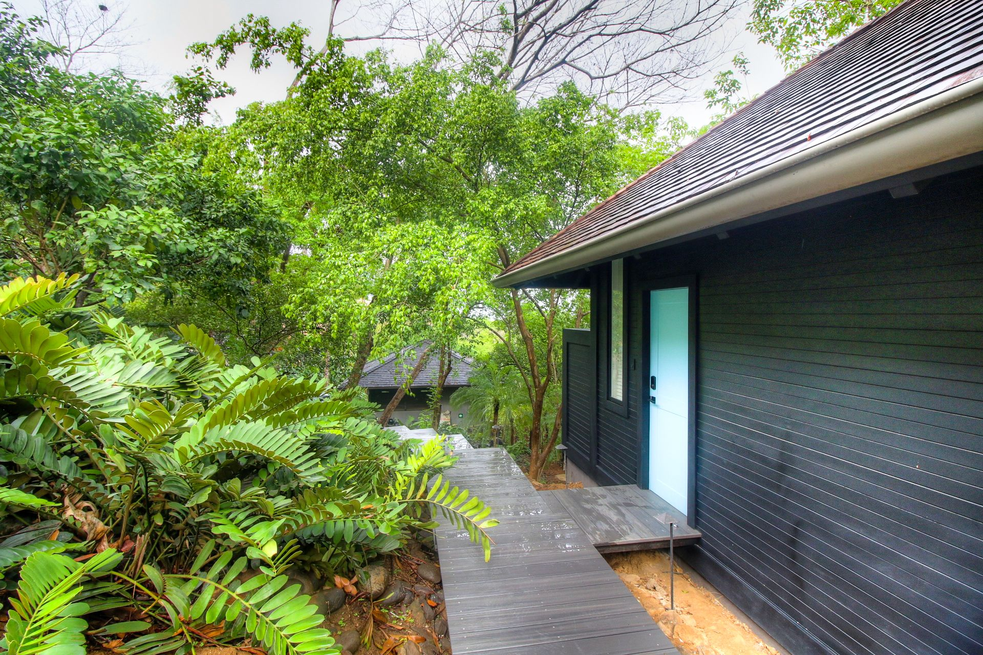 Lush jungle surrounds the structures