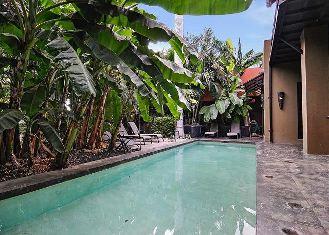 Large swimming pool at Casa Zen