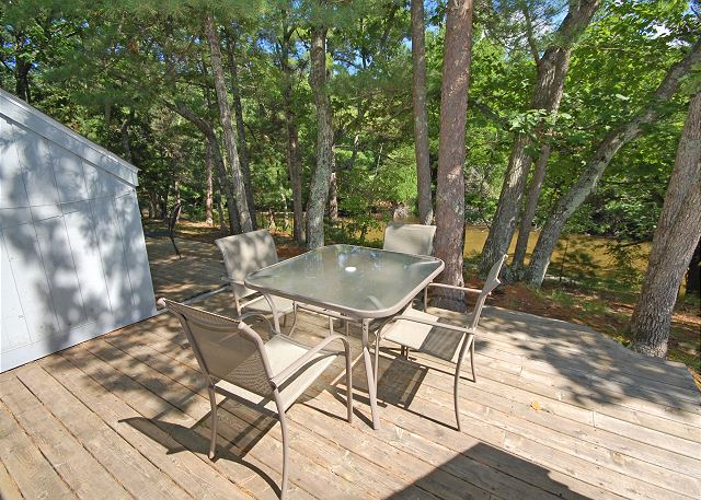 The deck and deck furniture with views of the Crystal River!