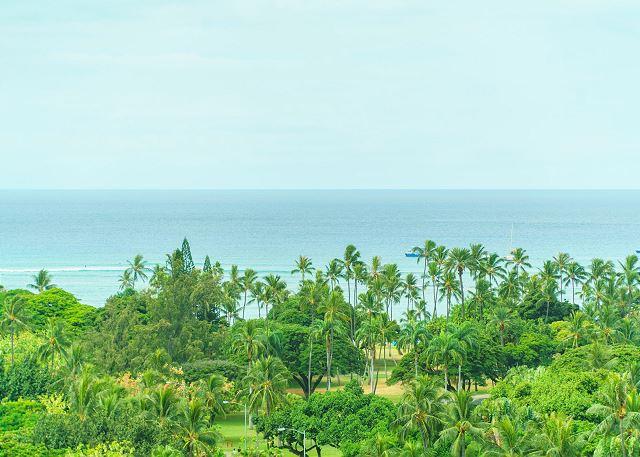 Luana Waikiki (LW14)