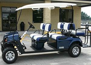 Blue 6 Seat Gas Golf Cart