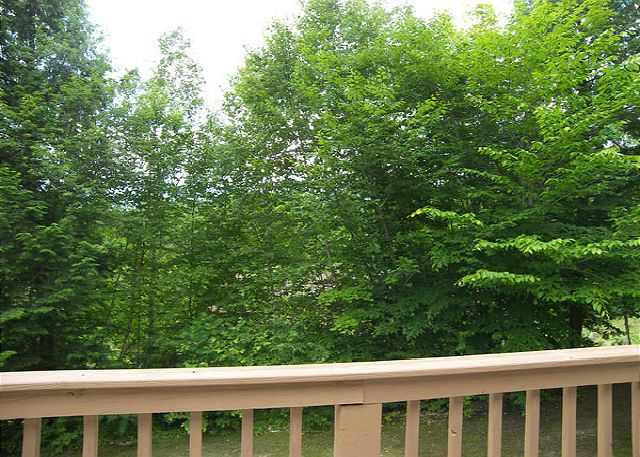Summer view from the deck of Mansion Hill 125P.  There is a mountain view here in winter months.