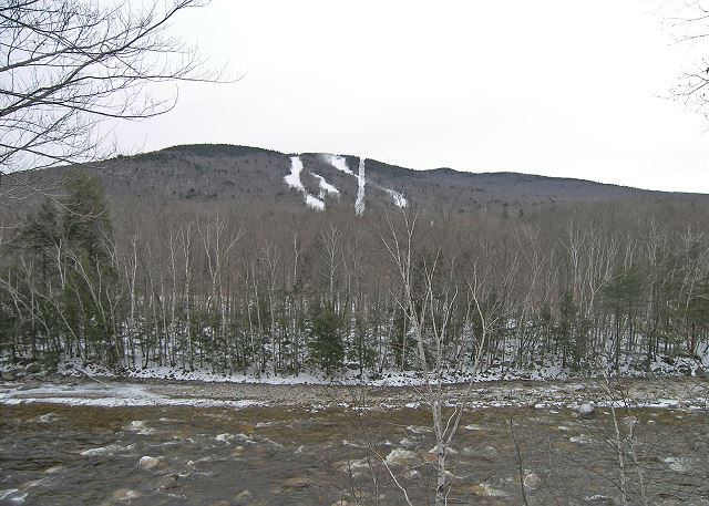 New Hampshire, USA ID#225721