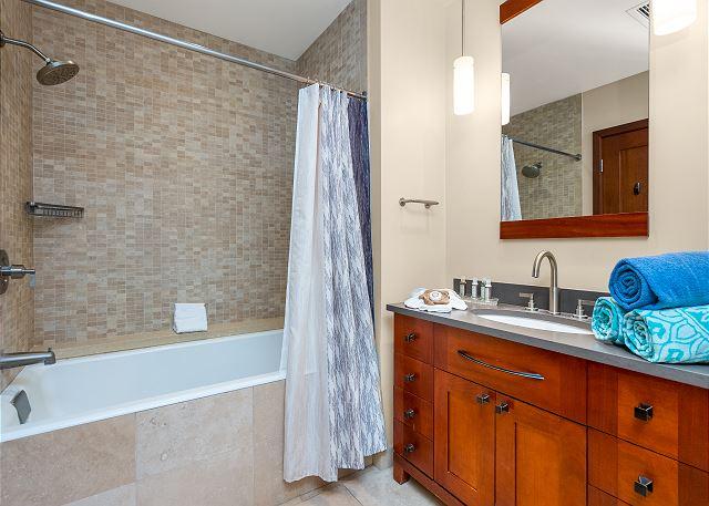 Bathroom 3 tub/shower combo