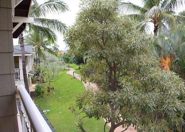 View from master lanai