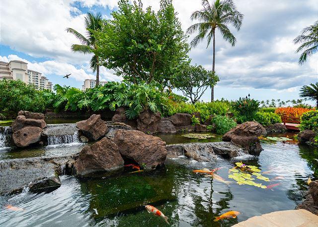 Garden Koi Area