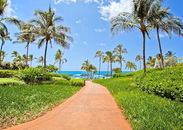 Pathway to lagoon 2