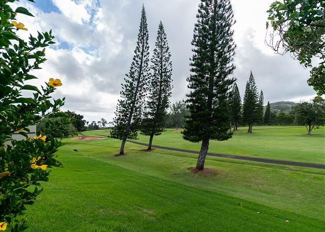 Golf Course off Lanai