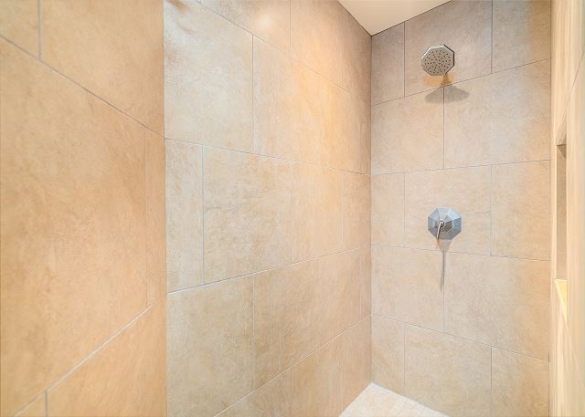 Master bathroom step in shower