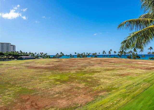 Open field in between Beach Villas and Marriott Vacation Club