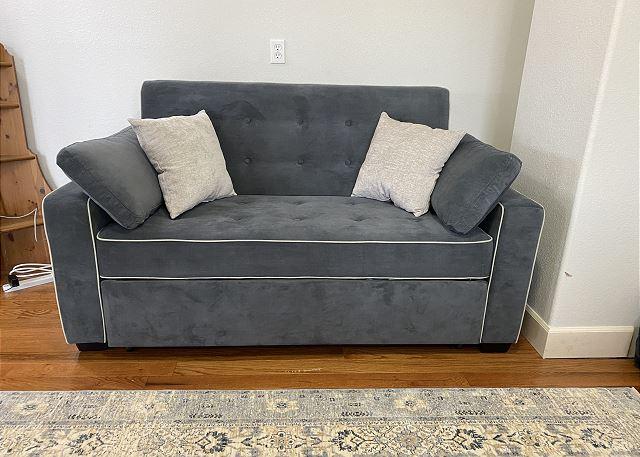 Sofa Sleeper (full) in office