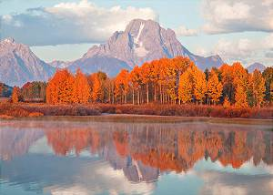 Mountain Moran and Autumn Colors