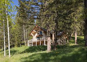 Cabin Below - Sunshine and Evergreens