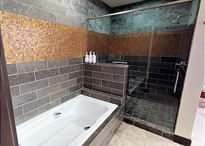 Master Bathroom - Walk-in Shower and Tub