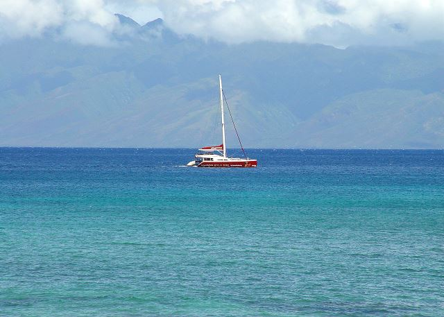 Let's Sail Away!