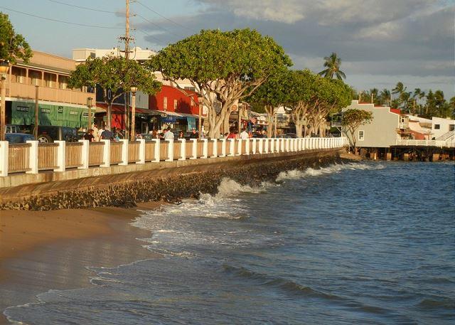 Lahaina Sea wall