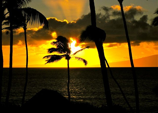 Beautiful nightly Sunsets!