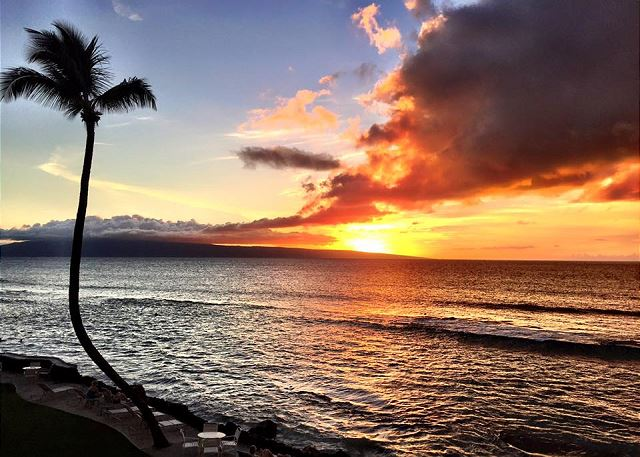 Restaurants Near Makani Shores Maui