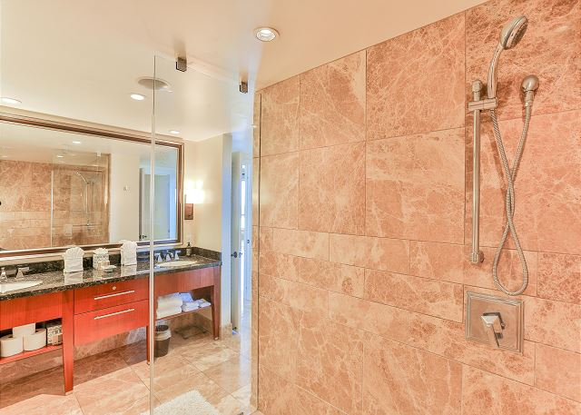Master Bathroom Shower with dual shower heads