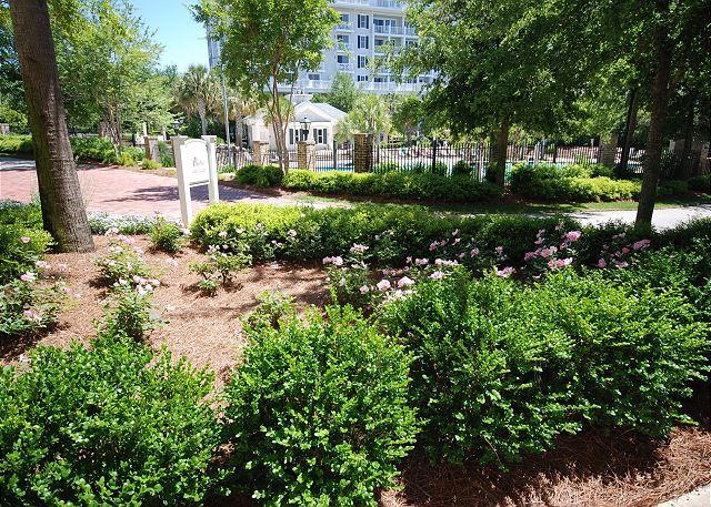 Lucious Garden