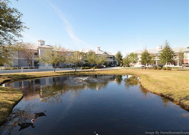 Community Landscape View