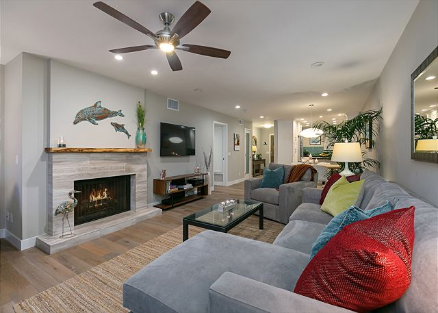Del Mar Fully Remodeled! Stunning Ocean View